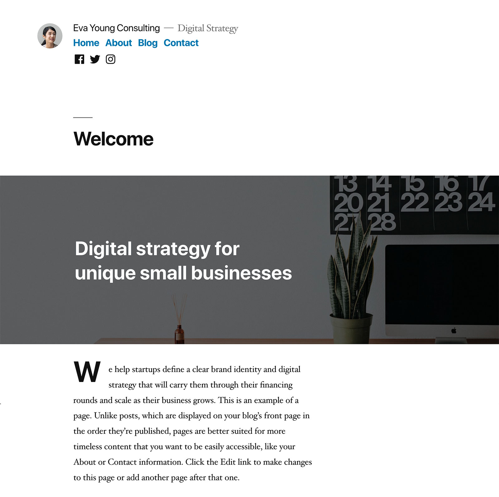 İyirmi on altı WordPress mövzusu - Ekran görüntüsü