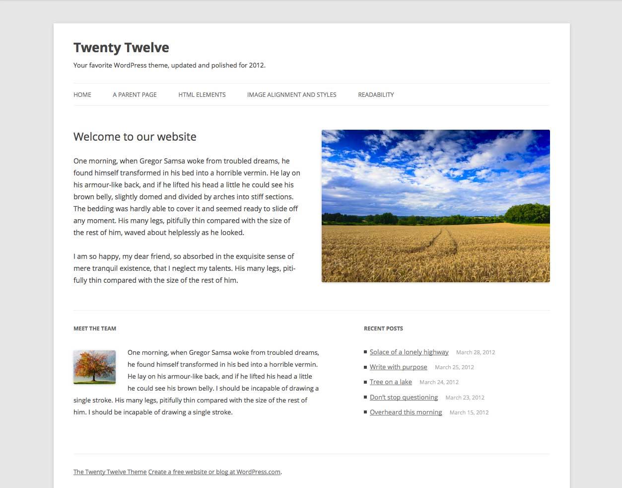 WordPress iyirmi on iki mövzu - Ekran görüntüsü