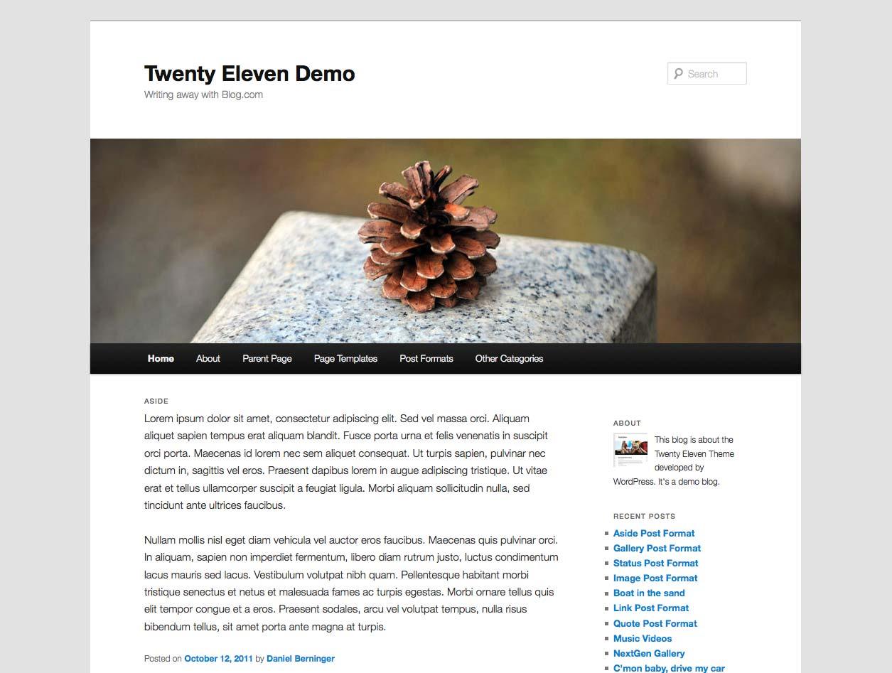 İyirmi Eleven WordPress mövzusu - ekran görüntüsü