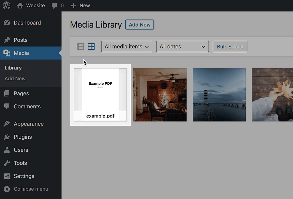 PDF cargado
