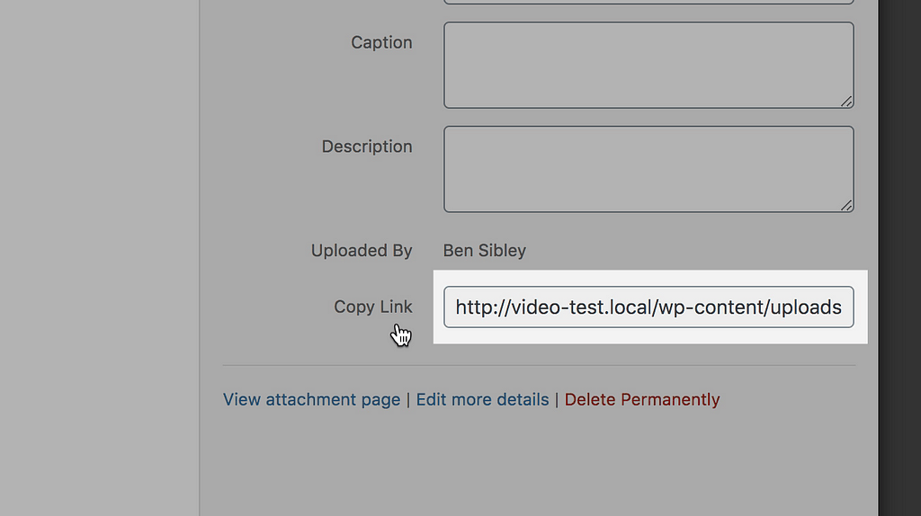 La URL del PDF