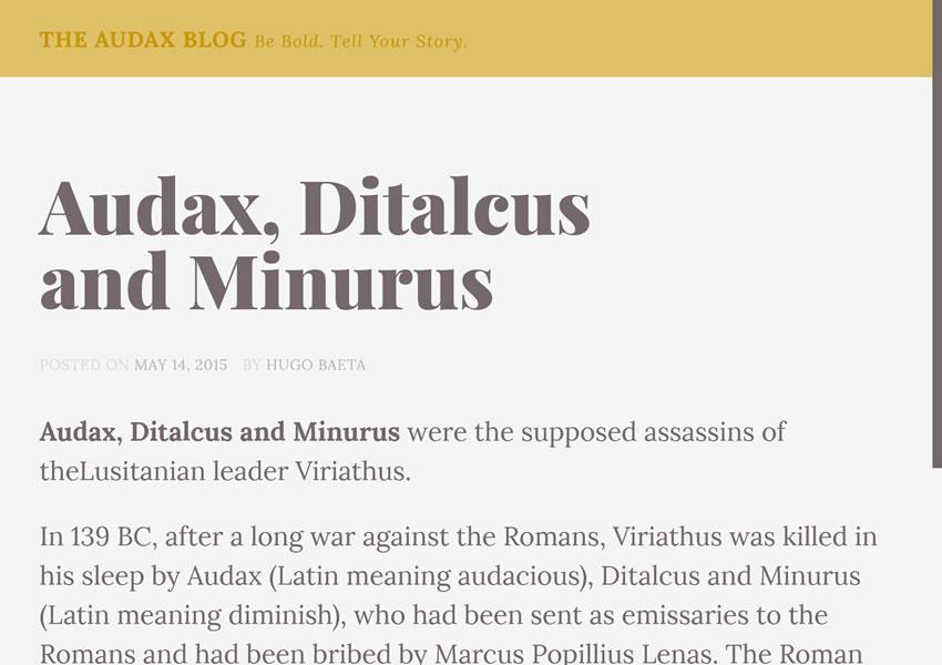 Audax WordPress theme wp responsive template blog writer artículo largo