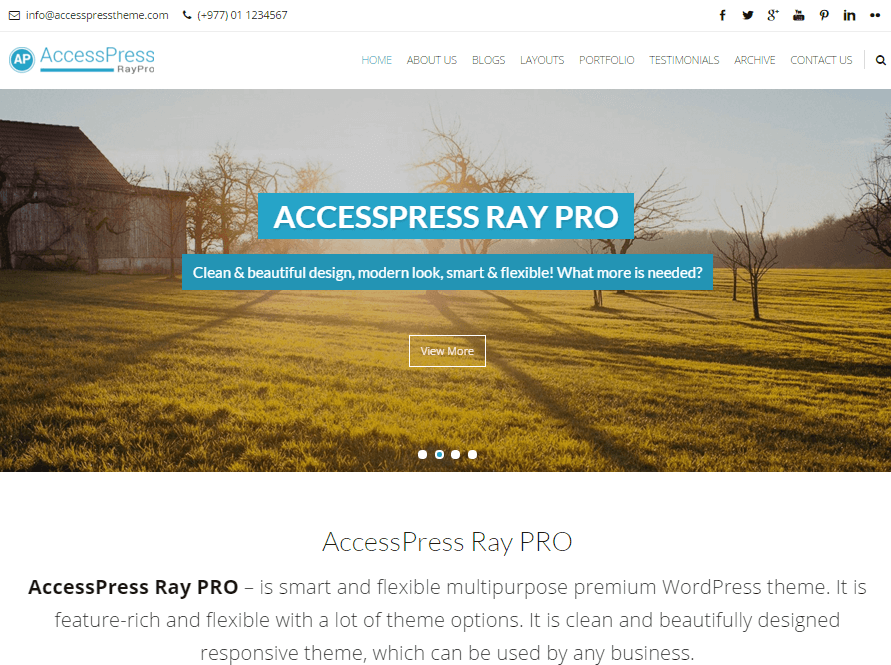 AccessPress Ray PRO