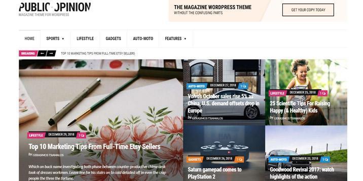 Tema de WordPress de opinión pública por cssigniter