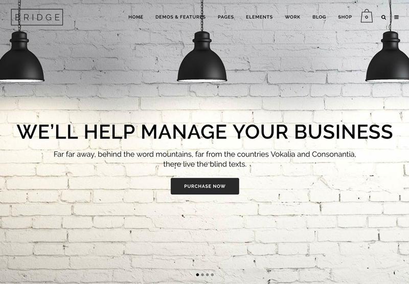 Téma WordPress Bridge pre webové stránky elektronického obchodu