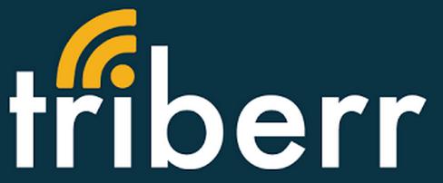 Logotipo de Triberr InfoBunny