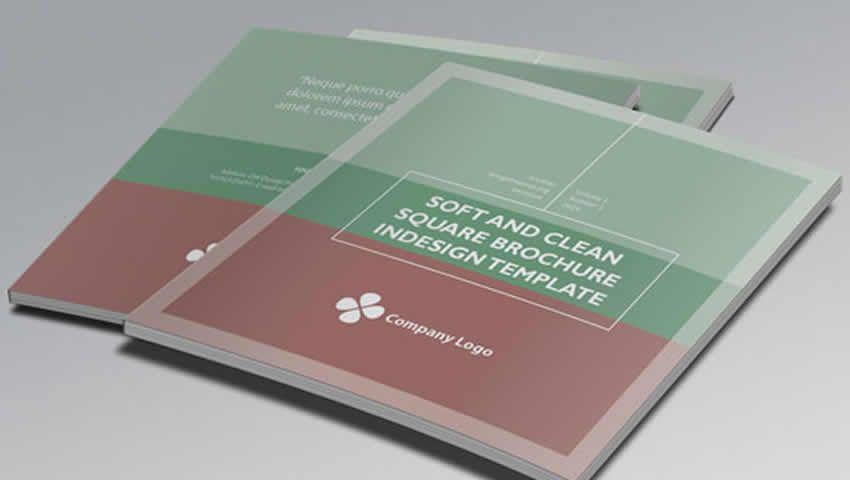 Mẫu brochure InDesign vuông và mịn