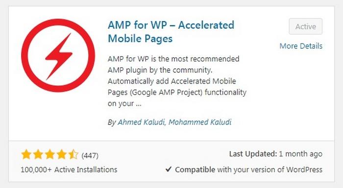 Errores de WordPress - AMP