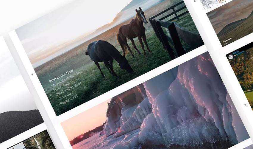 Giới thiệu tối thiểu Mẫu nhiếp ảnh gia danh mục đầu tư máy ảnh trang web thiết kế web cảm hứng ui ux