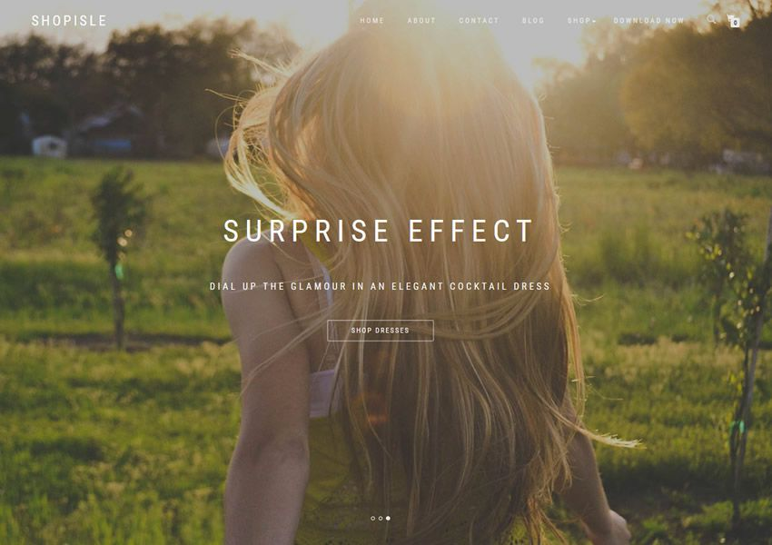 ShopIsle free wordpress theme wp responzívna vstupná stránka