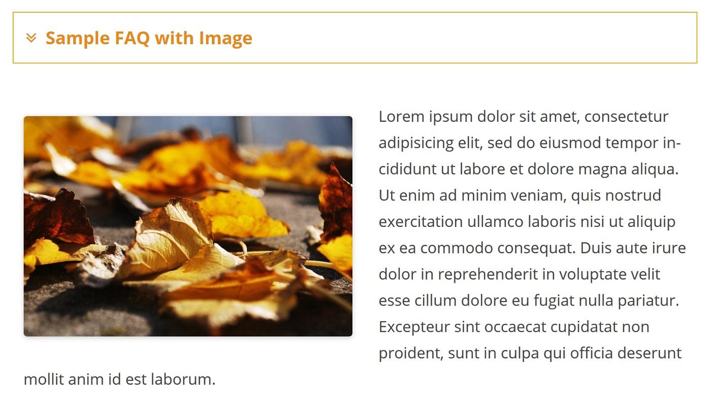 """Bir FAQ içərisində bir şəkil göstərən bir ekran görüntüsü """"width ="""" 1400 """"height ="""" 788"""