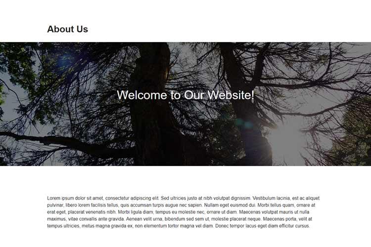 Szeroka i pełna szerokość projektu bloku Gutenberga w WordPress