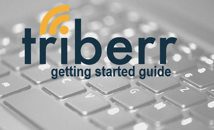 guía para principiantes de triberr