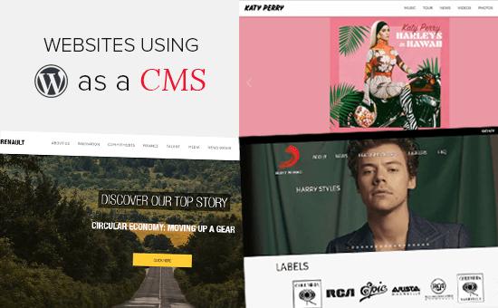 25 safle poblogaidd yn defnyddio WordPress fel CMS yn 2020