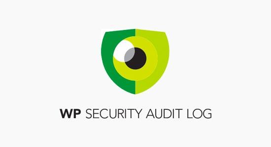 Registro de auditoría de seguridad de WP