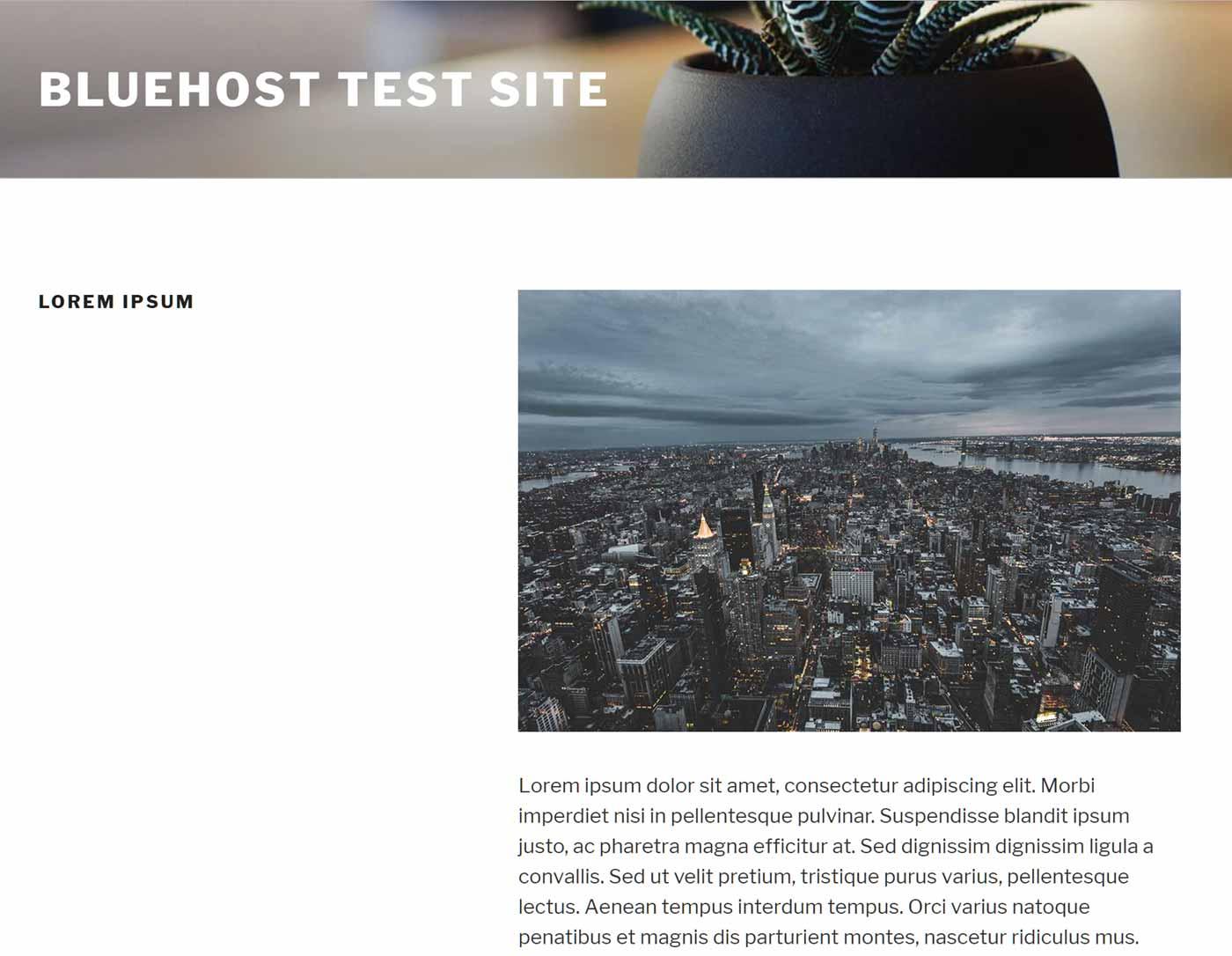 Página de prueba de tema de WordPress 2017