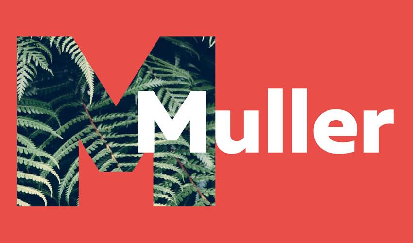 Muller pulsuz minimal dizayn dizaynı tipografi tipografiyası