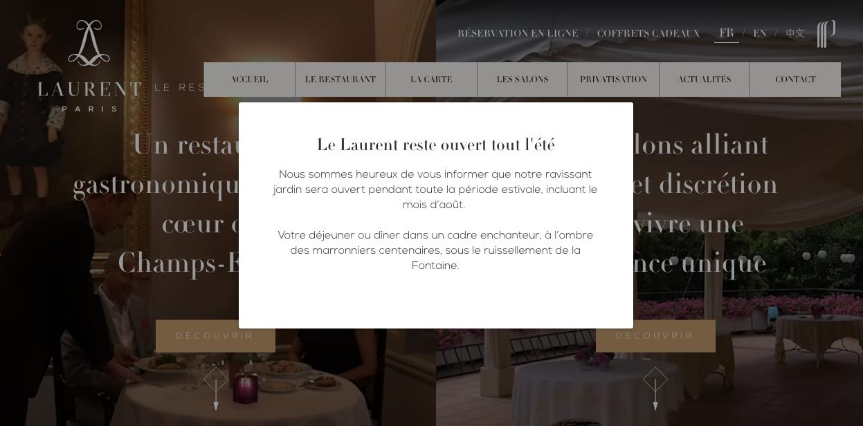 video para el diseño del sitio web del restaurante