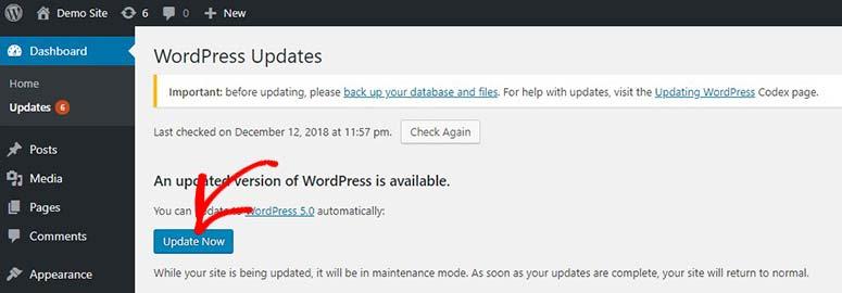 Actualiza WordPress ahora