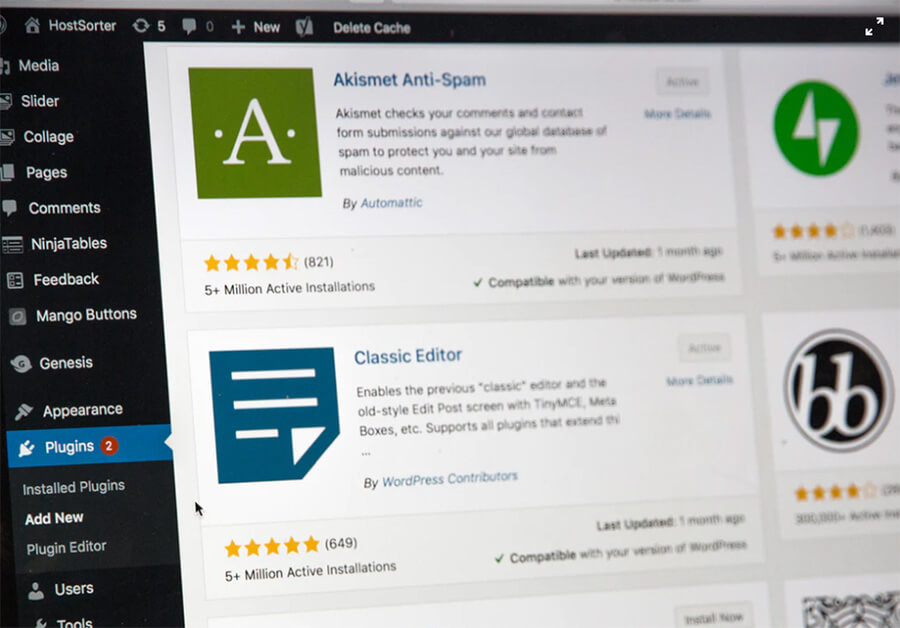¿Qué es la personalización de WordPress con temas y complementos?