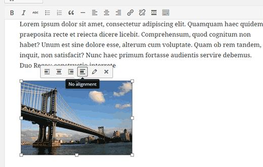 Online Image Toolbar