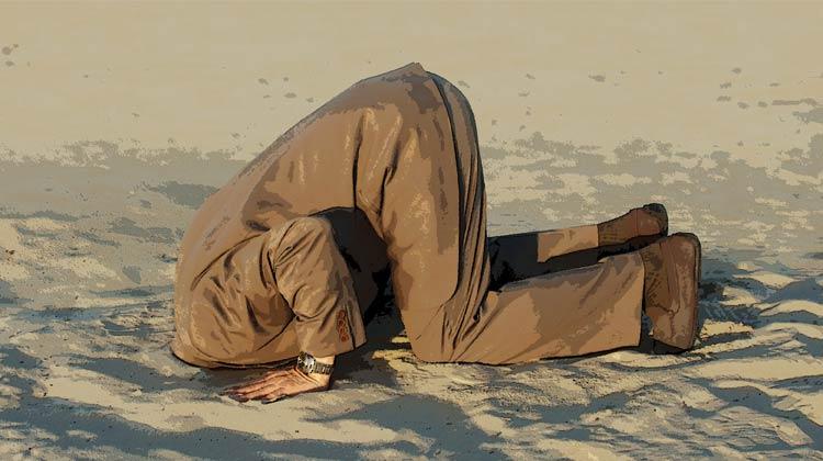 ¡Saca tu cabeza de la arena! Por qué necesita publicidad en video | Publicidad disruptiva