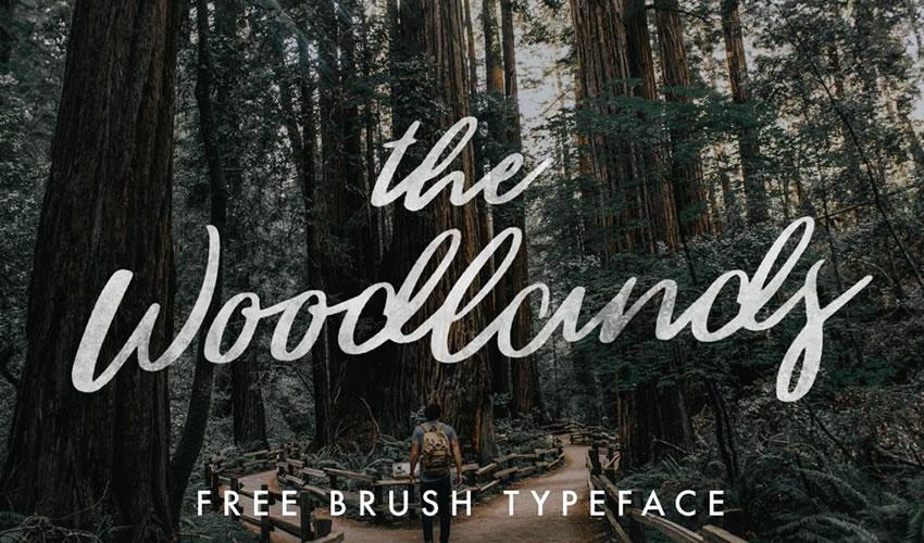 fuente libre caligrafía tipografía script The Woodlands