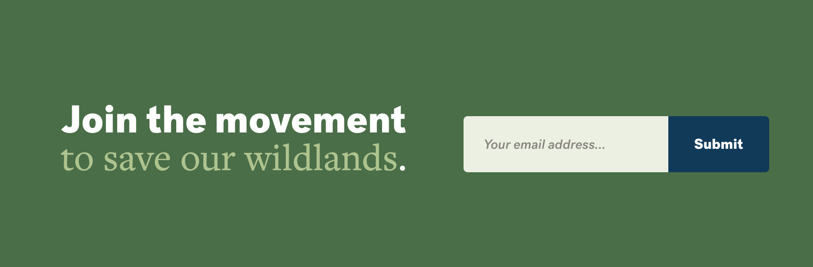 Boletín de correo electrónico Registrarse Llamado a la acción (captura de pantalla)
