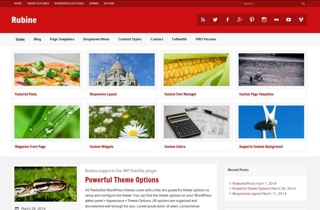 free magazine wordpress theme rubine