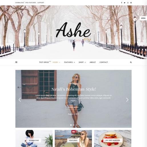 Temas gratuitos de WordPress con control deslizante - Ashe