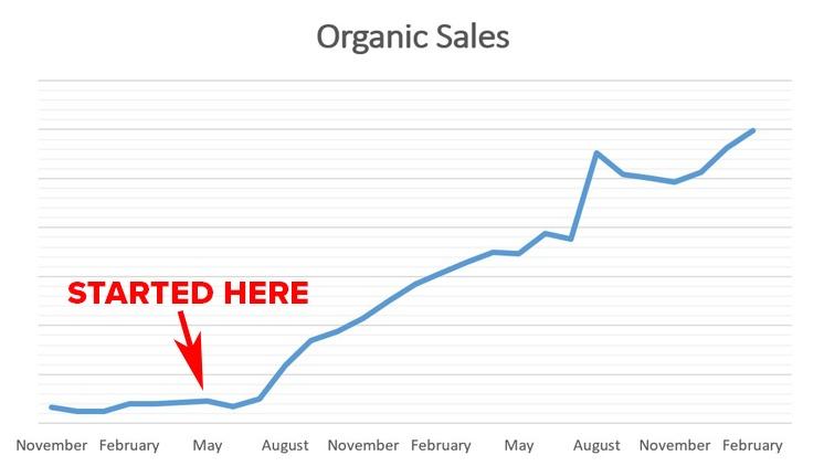 Los efectos del liderazgo del pensamiento en las ventas orgánicas | Publicidad disruptiva