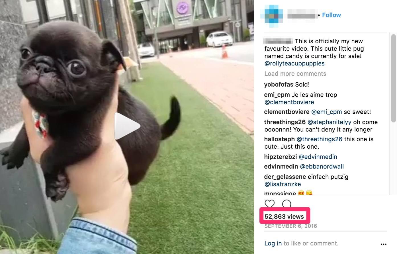 Cómo conseguir seguidores en Instagram con el reposicionamiento