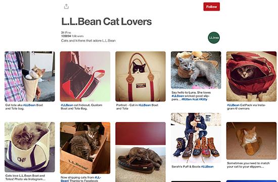 L.L. Pinterest Ban phổ biến