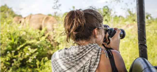 Consejos para bloggers de vida salvaje