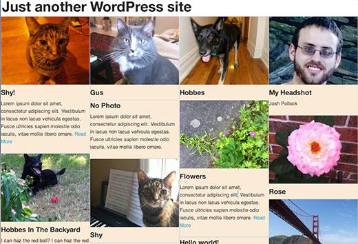 WordPress-də hörgü grid layoutunun görüntüsü