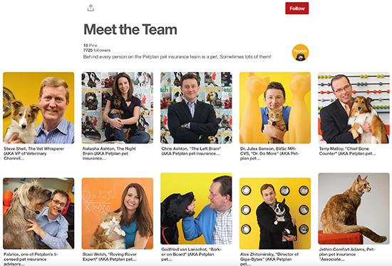 Petplan Pinterest Conocer al equipo