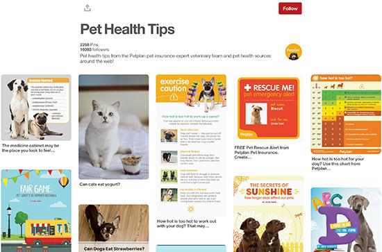 Petplan Pinterest Lời khuyên về sức khỏe thú cưng