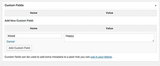 Thêm trường tùy chỉnh vào bài đăng hoặc trang WordPress