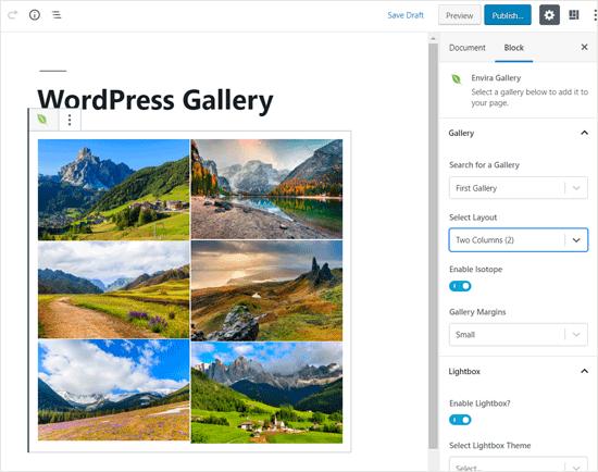 Envira Gallery Mejor bloque de WordPress para galería de fotos