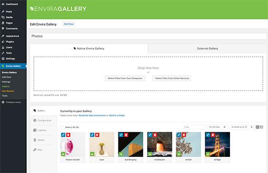Envira Gallery istifadəçi interfeysi