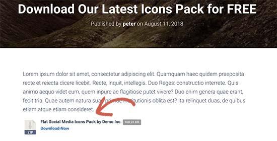 Tải xuống các tệp trong một bài đăng WordPress