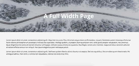 Página de ancho completo usando la plantilla de ancho completo del tema