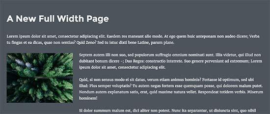 Vista previa de página de ancho completo