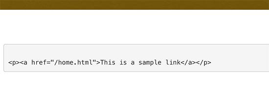 Hiển thị mã thủ công trong WordPress