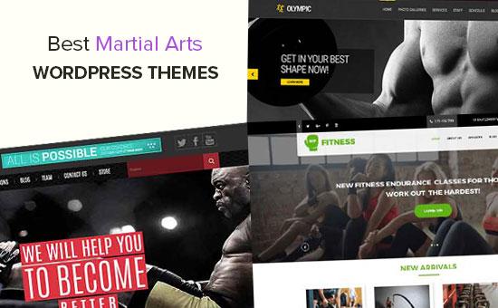 Los mejores temas de WordPress para artes marciales