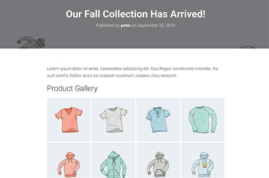 Vista previa de la galería de productos WooCommerce