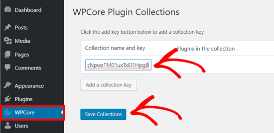 Guardar la clave de la colección de complementos WPCore en WordPress