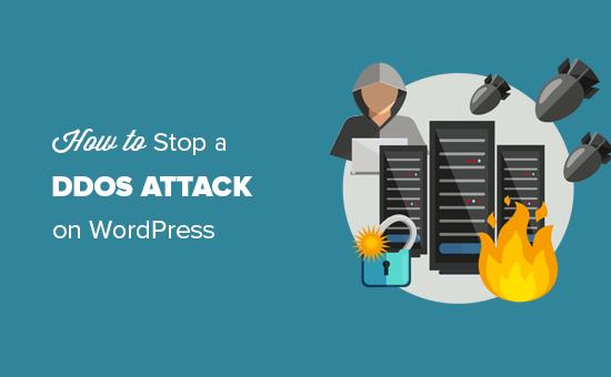 Dừng và ngăn chặn cuộc tấn công DDOS trên trang web WordPress