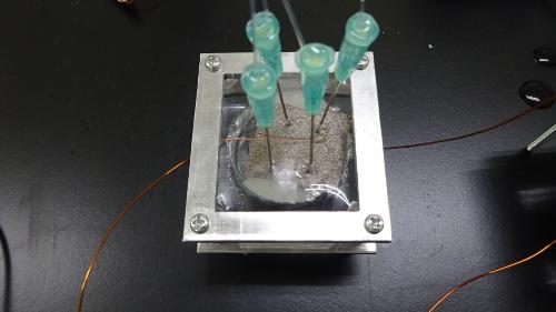 Un LED alimentado por el eléctrico Fish_Image 2