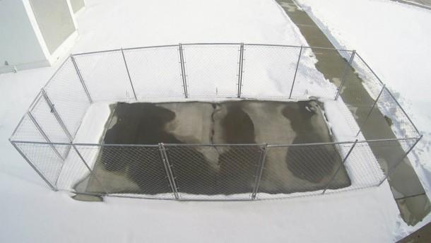 FAA está probando concreto conductivo que puede derretir la nieve 1